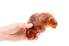 Το χέρι κρατά ορεκτικό croissant. Στοκ φωτογραφία με δικαίωμα ελεύθερης χρήσης