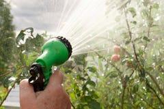 Το χέρι κρατά το χειρωνακτικό ψεκαστήρα για τον κήπο άρδευσης και ποτίσματος με τις προβολές ύδατος στοκ εικόνες
