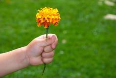 το χέρι λουλουδιών παιδ&i Στοκ εικόνες με δικαίωμα ελεύθερης χρήσης