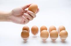 Το χέρι παίρνει ένα αυγό Στοκ φωτογραφία με δικαίωμα ελεύθερης χρήσης
