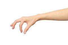 Το χέρι προσθέτει στο αλάτι τροφίμων και τα καρυκεύματα ή την εκμετάλλευση κάποιο αντικείμενο στοκ φωτογραφία με δικαίωμα ελεύθερης χρήσης