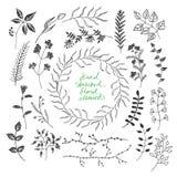 Το χέρι σκιαγράφησε τα floral στοιχεία Στοκ φωτογραφία με δικαίωμα ελεύθερης χρήσης