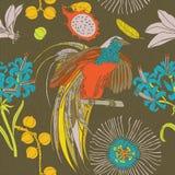Το χέρι σύρει τα τροπικά λουλούδια και τα πουλιά Ελεύθερη απεικόνιση δικαιώματος