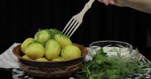 Το χέρι της γυναίκας παίρνει τη βρασμένη νέα εύγευστη πατάτα χρησιμοποιώντας το ξύλινο δίκρανο απόθεμα βίντεο