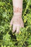 Το χέρι της με τη δερματοστιξία στον κήπο Στοκ Φωτογραφίες