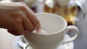 Το χέρι του κοριτσιού βάζει τη ζάχαρη raffinate σε ένα φλυτζάνι για το τσάι απόθεμα βίντεο