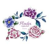 Το χέρι υποβάθρου πλαισίων λουλουδιών σύρει τα λουλούδια υποβάθρου Στοκ Εικόνες