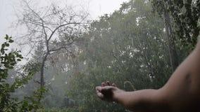 Το χέρι φθάνει μέχρι το θυελλώδη ουρανό, χαιρετίζει τη βροχή που αναπηδά από τα άκρα δακτύλου φιλμ μικρού μήκους