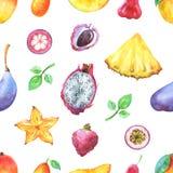 Το χέρι χρωμάτισε το άνευ ραφής εξωτικό σχέδιο με τα φρούτα watercolor απεικόνιση αποθεμάτων