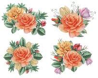 Το χέρι χρωμάτισε το γοητευτικό συνδυασμό watercolor λουλουδιών και φύλλων, που απομονώθηκε στο άσπρο υπόβαθρο ελεύθερη απεικόνιση δικαιώματος