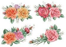 Το χέρι χρωμάτισε το γοητευτικό συνδυασμό watercolor λουλουδιών και φύλλων, που απομονώθηκε στο άσπρο υπόβαθρο Στοκ Εικόνα