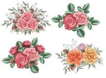 Το χέρι χρωμάτισε το γοητευτικό συνδυασμό watercolor λουλουδιών και φύλλων, που απομονώθηκε στο άσπρο υπόβαθρο Στοκ εικόνες με δικαίωμα ελεύθερης χρήσης