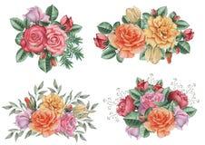 Το χέρι χρωμάτισε το γοητευτικό συνδυασμό watercolor λουλουδιών και φύλλων, που απομονώθηκε στο άσπρο υπόβαθρο Στοκ Φωτογραφία