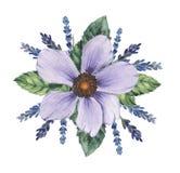 Το χέρι χρωμάτισε το γοητευτικό συνδυασμό watercolor λουλουδιών και φύλλων, που απομονώθηκε στο άσπρο υπόβαθρο διανυσματική απεικόνιση