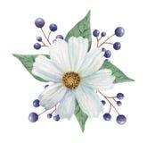 Το χέρι χρωμάτισε το γοητευτικό συνδυασμό watercolor λουλουδιών και φύλλων, που απομονώθηκε στο άσπρο υπόβαθρο απεικόνιση αποθεμάτων