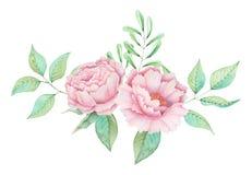 Το χέρι χρωμάτισε το γοητευτικό συνδυασμό watercolor λουλουδιών και φύλλων που απομονώθηκαν στο άσπρο υπόβαθρο Στοκ Φωτογραφίες