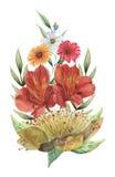 Το χέρι χρωμάτισε το γοητευτικό συνδυασμό watercolor λουλουδιών και φύλλων που απομονώθηκαν στο άσπρο υπόβαθρο Στοκ Εικόνες