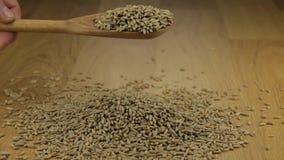 Το χέρι χύνει γρήγορα τα σιτάρια σίκαλης από ένα ξύλινο κουτάλι επάνω σε έναν σωρό της σίκαλης φιλμ μικρού μήκους