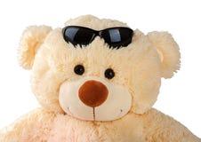 Το χαμόγελο teddy αντέχει με τα γυαλιά ηλίου Στοκ φωτογραφία με δικαίωμα ελεύθερης χρήσης