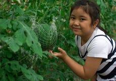 Το χαριτωμένο μικρό κορίτσι αγγίζει το καρπούζι του στο οργανικό αγρόκτημα Στοκ εικόνες με δικαίωμα ελεύθερης χρήσης