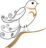 Το χαριτωμένο πουλί σε έναν κλάδο ελεύθερη απεικόνιση δικαιώματος