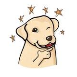 Το χαριτωμένο σκυλί του Λαμπραντόρ εμπιστευτικά θέτει απεικόνιση αποθεμάτων