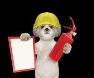 Το χαριτωμένο σκυλί πυροσβεστών είναι έτοιμο να εργαστεί Στοκ εικόνες με δικαίωμα ελεύθερης χρήσης