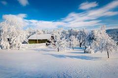 Το χειμερινό παραμύθι, βαριές χιονοπτώσεις κάλυψε τα δέντρα και τα σπίτια μέσα Στοκ εικόνα με δικαίωμα ελεύθερης χρήσης