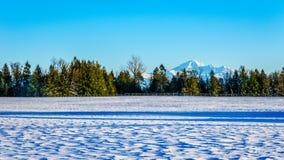 Το χειμερινό τοπίο της κοιλάδας Fraser στη Βρετανική Κολομβία, Καναδάς με το κοιμισμένο ηφαίστειο τοποθετεί Baker στο υπόβαθρο Στοκ Εικόνες