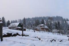 Το χειμώνα δασικά Carpathians Πολύ χιόνι, δέντρα που συσσωρεύονται επάνω στο χιόνι Στοκ Φωτογραφία