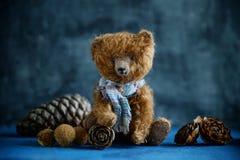 Το χειροποίητο παιχνίδι teddy αντέχει τους καφετιούς κώνους πεύκων βελούδου Στοκ φωτογραφία με δικαίωμα ελεύθερης χρήσης