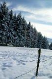 Το χιόνι στα βουνά, οροπέδιο ASIAGO, Βιτσέντσα, Ιταλία στοκ εικόνες