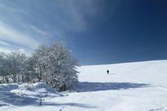 Το χιόνι στα βουνά, οροπέδιο ASIAGO, Βιτσέντσα, Ιταλία στοκ φωτογραφία με δικαίωμα ελεύθερης χρήσης