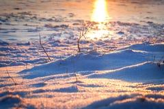 Το χιόνι στο υπόβαθρο της θάλασσας το χειμώνα Στοκ Φωτογραφία