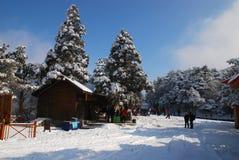 Το χιόνι LU υποστηριγμάτων Στοκ Φωτογραφίες