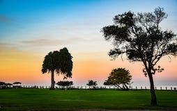 Το χλοώδες πάρκο στον όρμο της Λα Χόγια στο Σαν Ντιέγκο, Καλιφόρνια Στοκ Φωτογραφίες
