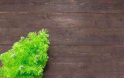 Το χριστουγεννιάτικο δέντρο είναι ανοικτό στο ξύλινο υπόβαθρο με το κενό διάστημα Στοκ Εικόνες