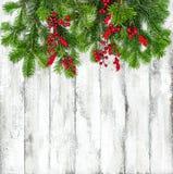 Το χριστουγεννιάτικο δέντρο διακλαδίζεται κόκκινες χειμερινές διακοπές β διακοσμήσεων μούρων Στοκ Φωτογραφία