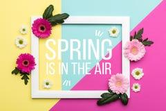 Το χρονικό floral επίπεδο άνοιξη βάζει τη ευχετήρια κάρτα μινιμαλισμού διανυσματική απεικόνιση