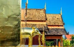 Το χρυσό άγαλμα ελεφάντων σε Wat Phra Σινγκ, το δημοφιλές ιστορικό ορόσημο του ναού σε Chiang Mai, Ταϊλάνδη στοκ φωτογραφίες