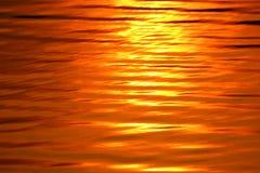 Το χρυσό κύμα στοκ εικόνα με δικαίωμα ελεύθερης χρήσης