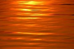 Το χρυσό κύμα 2 στοκ εικόνα