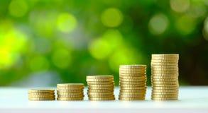 Το χρυσό νόμισμα αυξάνεται σταθερά Στοκ φωτογραφία με δικαίωμα ελεύθερης χρήσης