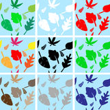 το χρώμα αφήνει άνευ ραφής Στοκ εικόνα με δικαίωμα ελεύθερης χρήσης