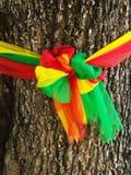 Το χρώμα τριών υφάσματος τυλίγει το παλαιό δέντρο, η πεποίθηση στην Ταϊλάνδη στοκ εικόνα με δικαίωμα ελεύθερης χρήσης