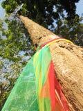 Το χρώμα τριών υφάσματος τυλίγει το παλαιό δέντρο, η πεποίθηση στην Ταϊλάνδη στοκ εικόνες