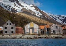 Το χωριό κυνηγιού φάλαινας εγκατέλειψε εξάλλου τις φάλαινες ήταν σκοτωμένο in 1920 Στοκ εικόνες με δικαίωμα ελεύθερης χρήσης