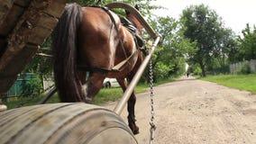 Το χωριό scape, χρησιμοποιημένο άλογο φέρνει το κάρρο ροδών, επαρχία απόθεμα βίντεο