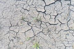 Το χώμα ράγισε από την ξηρασία και τον καψαλίζοντας ήλιο στοκ εικόνα με δικαίωμα ελεύθερης χρήσης