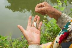 Το ψάρι επανδρώνει μέσα το χέρι Στοκ Εικόνες